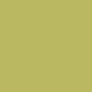 What color scheme to choose for my boy 39 s bedroom walls - Olive green colour schemes ...